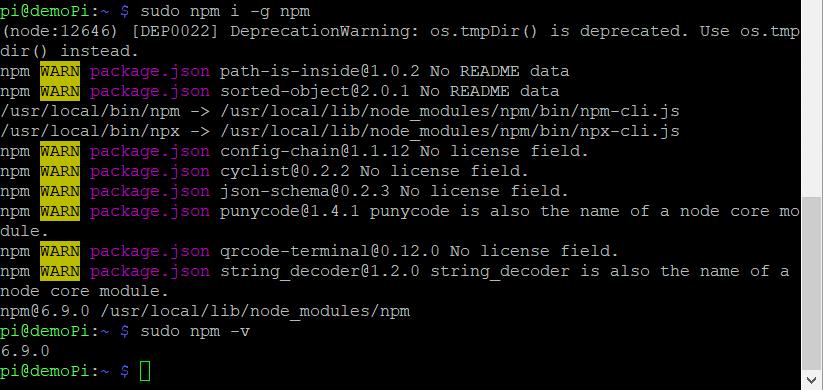 NPM updaten